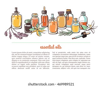Vector illustration with essential oil bottles, aromatic plants and flowers. Bright colorful doodle objects on white background with place for text. Aromatherapy card, flier or leaflet design.
