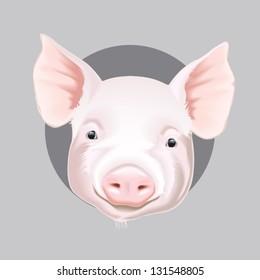 Vector illustration of farm animals faces: pig