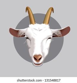 Vector illustration of farm animals faces: goat