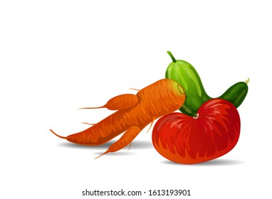 Vector illustration of fashionable ugly organic tomato, carrot and cucumber isolated on white background. Ugly food concept, ugly forms of organic vegetables.