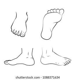 vector illustration of a feet standing. Top, side and bottom