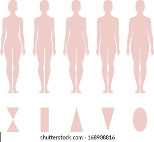 Vector illustration of female figure. Different body types. Silhouette