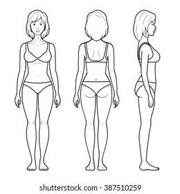 Vector illustration of a female figure - front, rear and side view in underwear