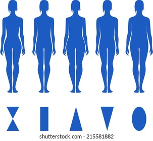 Vector illustration of female silhouette. Different body types