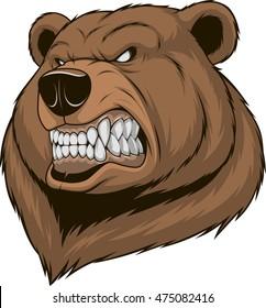 Vector illustration, a ferocious bear head on a white background