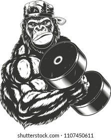 Vector illustration, ferocious gorilla bodybuilder performs an exercise with a large dumbbell