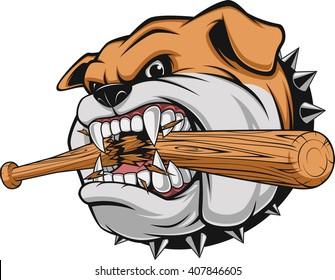 Vector illustration, a fierce bulldog breaks a baseball bat