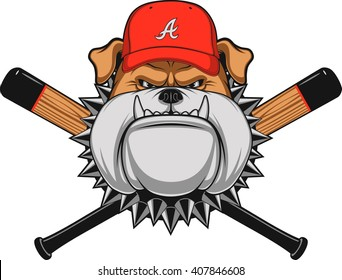 Vector illustration, a fierce bulldog wearing baseball cap, against a white background