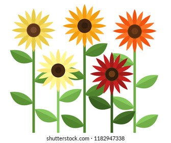 Vector illustration of five different colored sunflowers