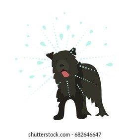 Vector illustration in flat cartoon style the dog shakes the water. Isolated on white background.