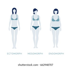 Vector illustration. Flat style, simple trendy design.White background isolated. Types of female figures. Body constitution. Ectomorph, mesomorph, endomorph