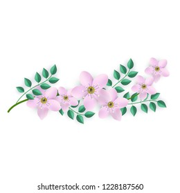 Vector illustration of floral composition with branch of pink flowers and green leaves isolated on white background - beautiful element for romantic tender design in flat style.