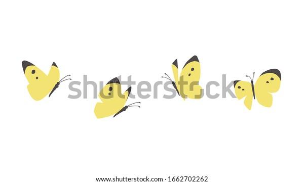 ベクターイラスト|蝶が飛ぶ