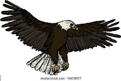 Vector illustration of flying eagle