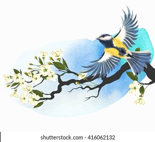 Vector illustration of flying tomtit on the blooming cherry branch on bright watercolor background
