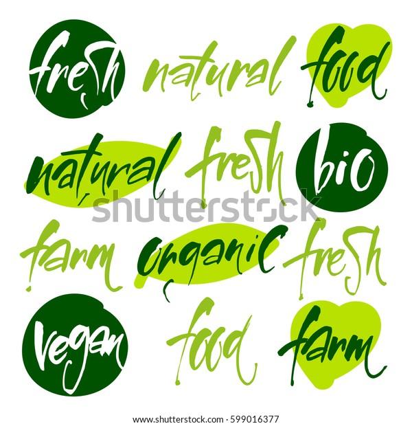 Vector illustration food design. Vegan menu. Bio, Ecology, Organic logos and icons, labels, tags.