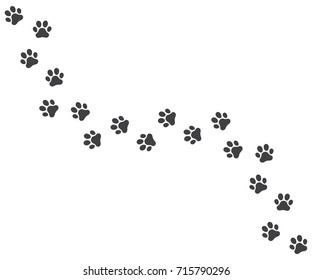 Vector illustration of a Footpath trail of vector dog prints walking randomly