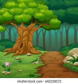 Vector illustration of Forest background with dirt road
