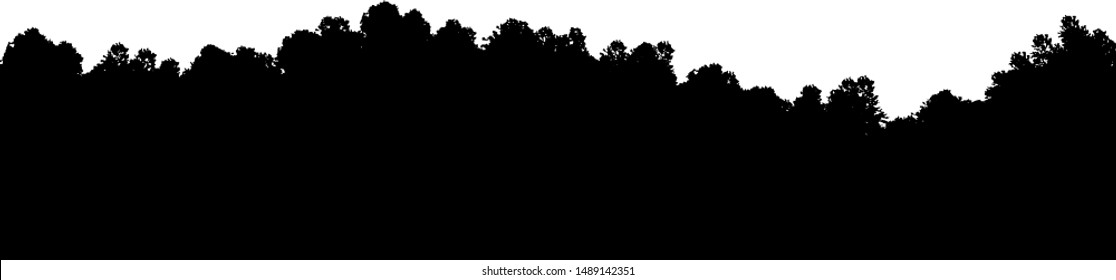 Vector illustration of forest seamless panorama. Hilly forest outdoor render