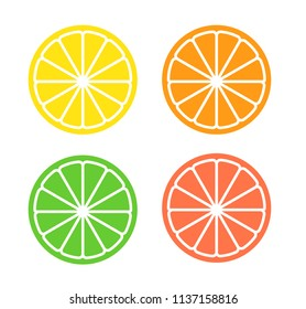 Vector illustration of four citrus slices