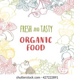 Vector illustration Fresh organic spring summer fruits frame. Contour design on white background. Vegetarian menu, vegetables market flyer