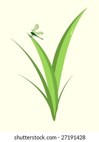 Vector illustration of  funky Dragonfly  sitting on the green leaf