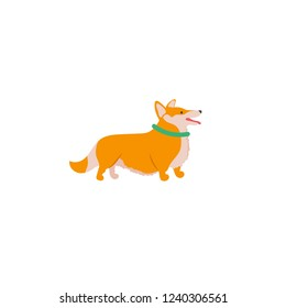 Vector illustration. Funny cartoon style icon of Welsh Corgi Cardigan for different design. Cute family dog.