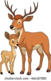 Vector illustration funny exotic animal deer family