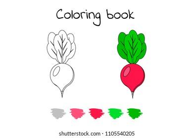 vector illustration game for children vegetable coloring page radish