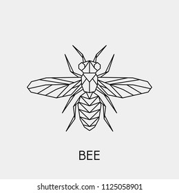 Vector illustration of a geometric polygonal bee. Abstract linear insect.