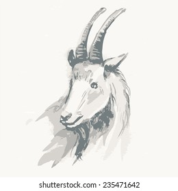 Vector illustration of goat, symbol of New Year. Watercolor (hand draw). Year of the goat.