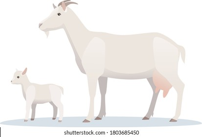 Vector illustration of goat with young baby goatling. Farm animals, domestic small cattle adult and young.