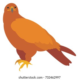Vector Illustration of a Golden Eagle