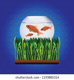 vector illustration of golden fish in bowl of water and green grass  on blue background