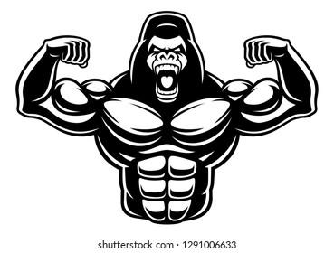Vector illustration of gorilla bodybuilder, isolated on the white background.