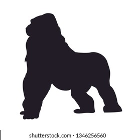 vector illustration of a gorilla, drawing silhouette, vector, white background
