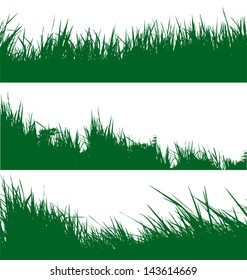 vector illustration of  grass  background