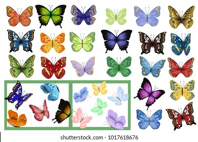 Vector illustration. Great collection of colorful butterflies of different species . Butterfly flying and sitting. A lot of different patterns on the wings.  Set summer, spring.