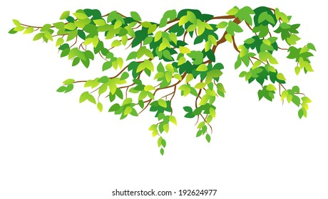 Cartoon Tree Branches Images Stock Photos Vectors Shutterstock Are you searching for cartoon tree png images or vector? https www shutterstock com image vector vector illustration green branch on white 192624977