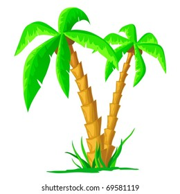 Vector illustration. Green cartoon tropical palm isolated on white background