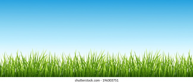 Vector illustration of a green grass against the sky