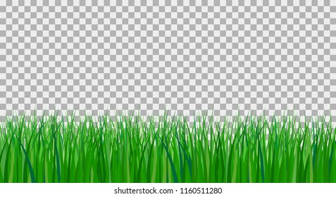 vector illustration of green grass on plaid background