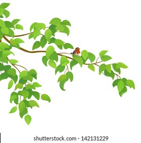 Vector illustration of a green tree branch with a bird