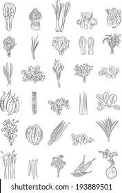 Vector illustration of Green Vegetables in line art mode