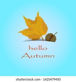 Vector illustration of greeting card. Hello Autumn concept. Flat design. - Shutterstock ID 1425479450