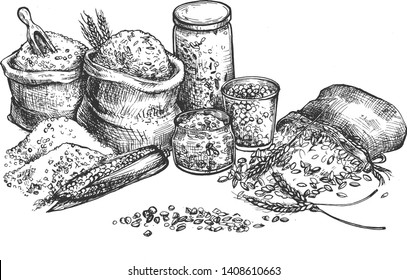 Vector illustration of grocery croup and cereal set. Rice, corn, wheat, oat, oatmeal, peas, beans in eco packaging, glass and cloth sacks bags for farmers market craft shop. Vintage hand drawn style.