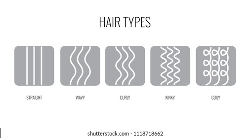 Vector Illustration of a Hair Types chart displaying all types and labeled. Curl types icon set for cosmetics, shampoo, conditioner, mask.