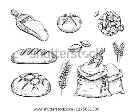 Vector Illustration Hand Draw Bakery Set Stock Vector Royalty Free