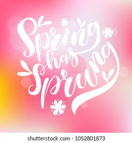 Vector illustration of hand drawn brush lettering quote Spring Has Sprung on bright blurred background for card, print, poster, blog, banner, social media design