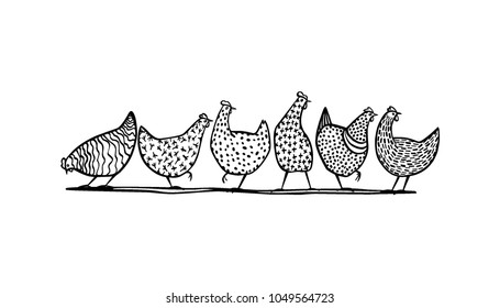Vector illustration of hand drawn chickens. Beautiful ink drawing, heavy contour, abstract design elements. Perfect elements for food or farming design.